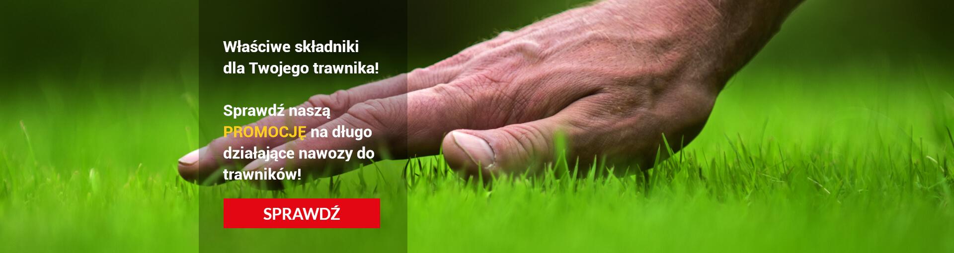 Właściwe składniki dla Twojego trawnika! Nawozy do trawników nawozy do trawy